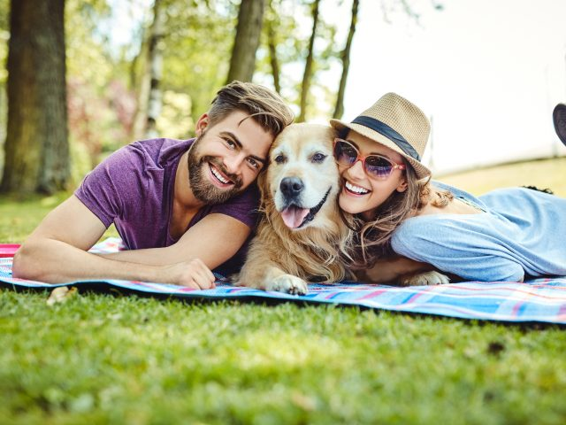 Couple picnic with dog